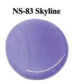 画像1: NS   Skyline Frit (スカイライン フリット)